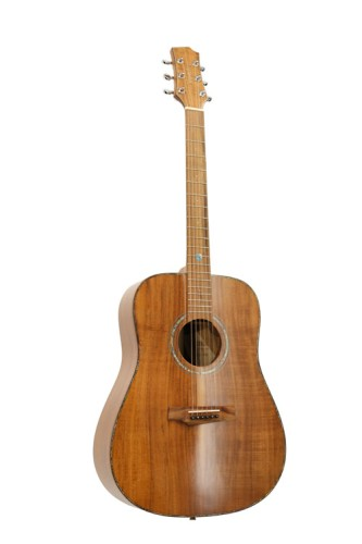 Akustinė gitara RANDON RGI-500