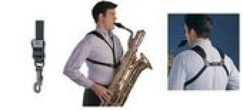 Saksofono petnešos